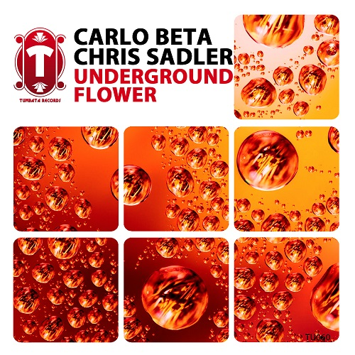 Carlo Beta & Chris Sadler - Underground Flower (Original Mix)